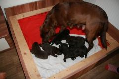 13 Tage nach der Geburt